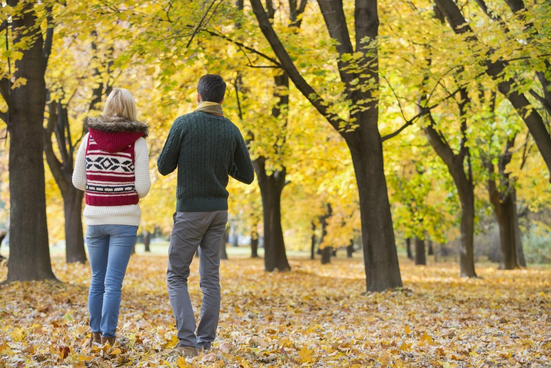 Herbst in Wien? Verpasse nicht diese Ideen!